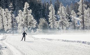 "Grosses Interesse am ""Engadin Skimarathon-individual"""
